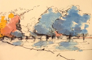 Trees and water 4
